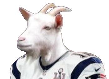 Tom Brady headshot